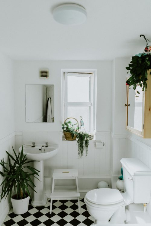 plants love bathrooms white bathroom with several green plants by sink window and toilet