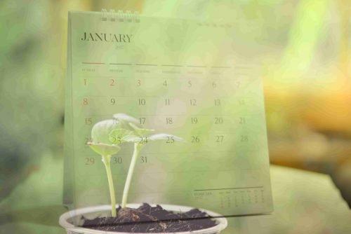 calendar for spring gardening tasks