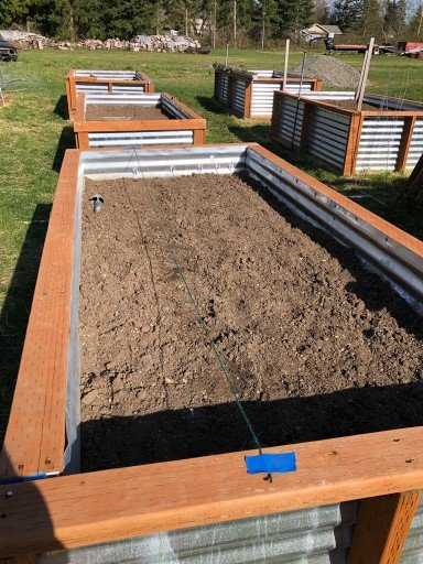 raised vegetable garden beds ready to plant